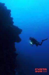 scuba diver wall dive